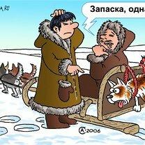 Карикатуры из сети фото приколы