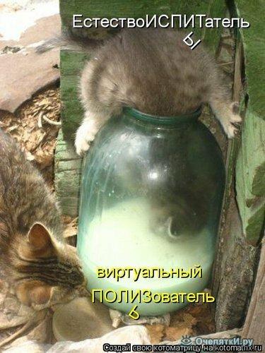 Животная котоматрица 33