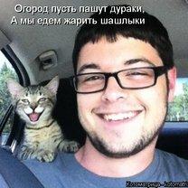 Добрая котоматрица смешных фото приколов