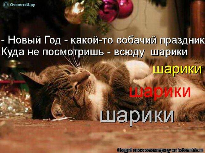 Новогодняя котоматрица 0