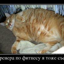 Январские демотиваторы смешных фото приколов