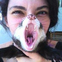 Кадры в самый нужный момент смешных фото приколов