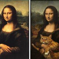 Просто добавь кота смешных фото приколов