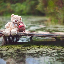 Весёлые и эмоциональные картинки смешных фото приколов