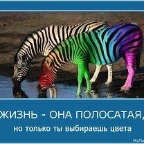 Фото приколы Будь осторожнее (21 фото)