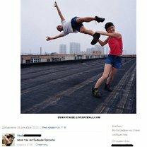 Смешные людские комментарии смешных фото приколов