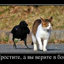Фото приколы Ничего никогда не поздно! (33 фото)