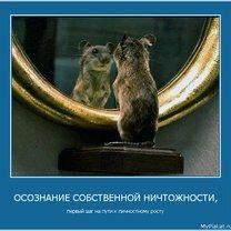 Фото приколы Мотивационные жизненные картинки (35 фото)