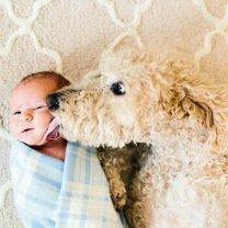 Милые животные и детишки