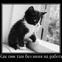 Фото приколы Поставь себе литьё! (31 фото)