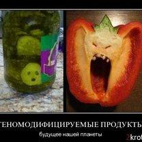 Фото приколы Демки с юмором и остроумием (33 фото)