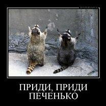 Фото приколы Мотиваторы и демотиваторы в сборке (24 фото)