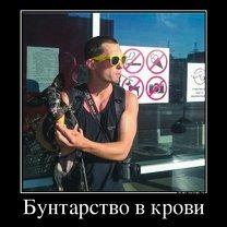Фото приколы Безвозмездные демотиваторы (51 фото)