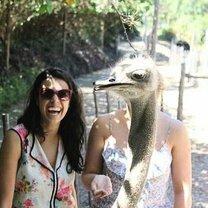 Смешное повседневное безумие смешных фото приколов