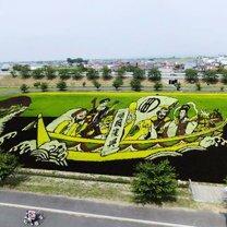 Масштабные картины на рисовых полях фото приколы
