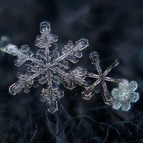 Фото приколы Снежинки в увеличении (23 фото)