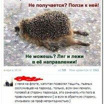 Юморные комментарии смешных фото приколов