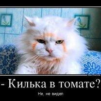 Фото приколы Настраивайся на положительные эмоции! (46 фото)