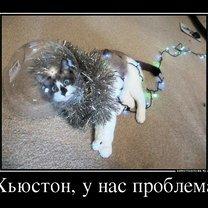 Не жадничай! фото приколы