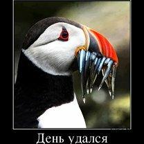 Фото приколы Будь реалистом! (37 фото)