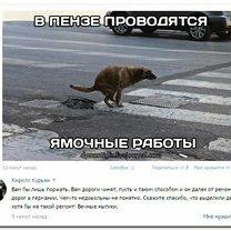 Весёлые надписи из соцсетей смешных фото приколов