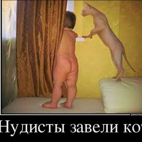 План на выходные смешных фото приколов