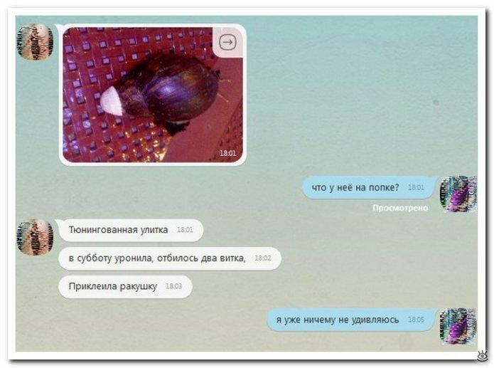 Словесные перлы из интернета 3