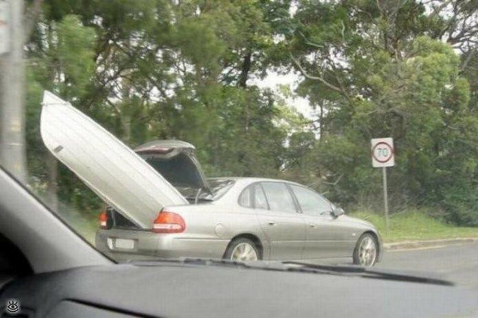 Автомобильные и дорожные казусы 23