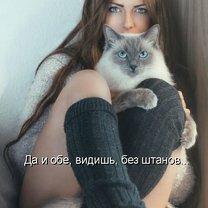 Фото приколы Весёлость котоматрицы (34 фото)