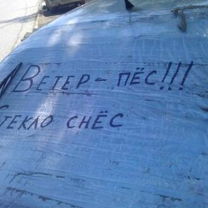 Фото приколы Я - рептилоид! (30 фото)