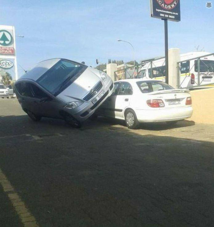 Автокурьёзы и дорожные приколы 19