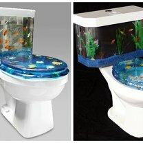 Странные туалеты фото приколы