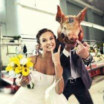 Суровые фото со свадеб фото приколы