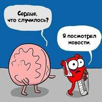 Сердце и ум: противостояние