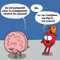 Сердце и ум: противостояние фото