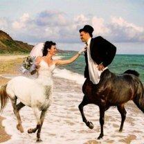 Свадебные прикольности