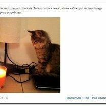 Фото приколы Весёлости-комментарии (32 фото)