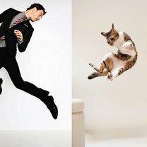 Фото приколы Модели пародируют котов (22 фото)