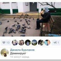 Фото приколы Комментарии всякие: весёлые и остроумные (52 фото)