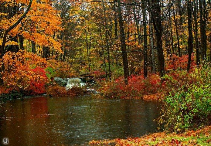 Осенняя волшебная пора 16