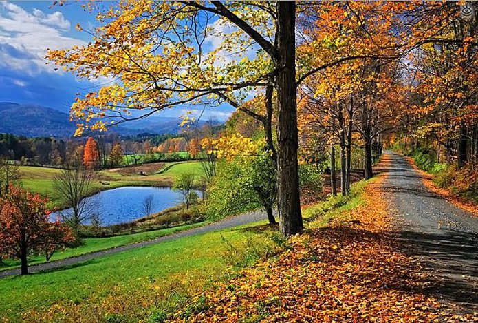 Осенняя волшебная пора 23