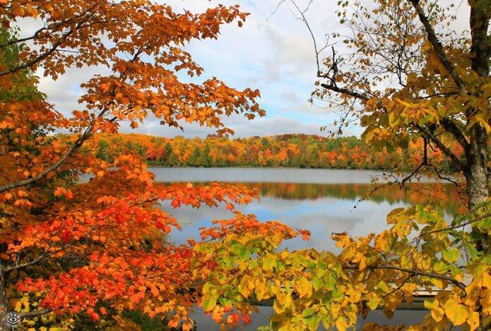 Осенняя волшебная пора 33