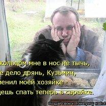 Фото приколы Жизненные истории про котов (25 фото)