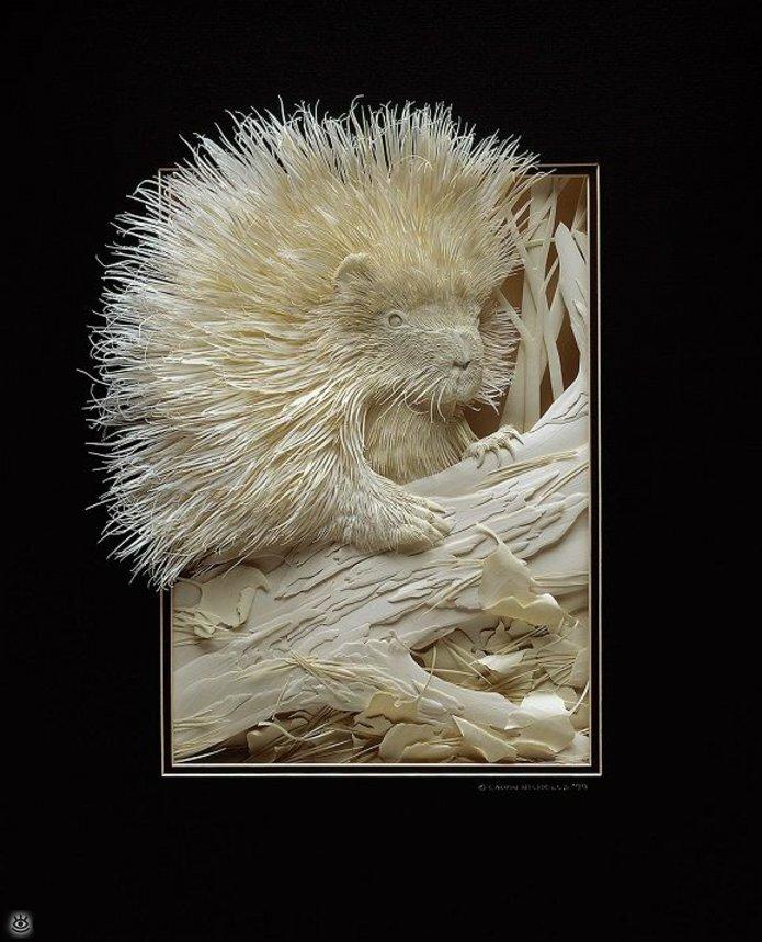 Бумажные природные скульптуры 30