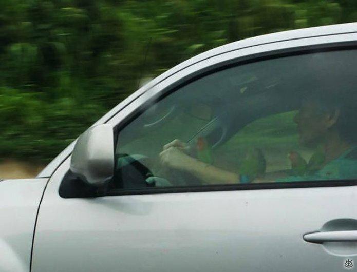 Автокурьёзы с дороги 16