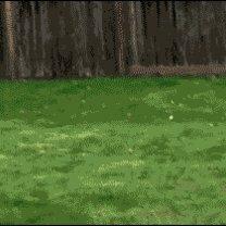 Живые весёлости в гифках смешных фото приколов