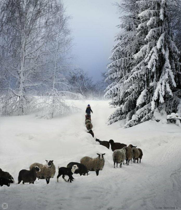 Детство в деревне зимой 9