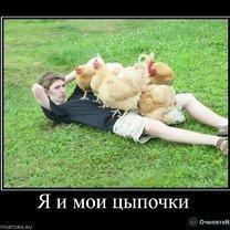 Юморные демотиваторы смешных фото приколов