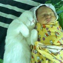 Фото приколы Когда нянчишься с детьми (20 фото)