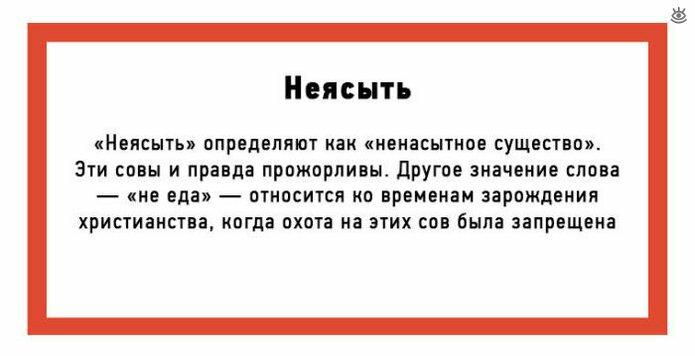 Нерусские слова, ставшие русскими 0
